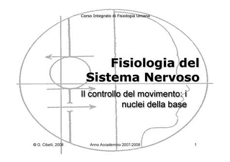 dispense fisiologia umana fisiologia umana ii controllo movimento nuclei della