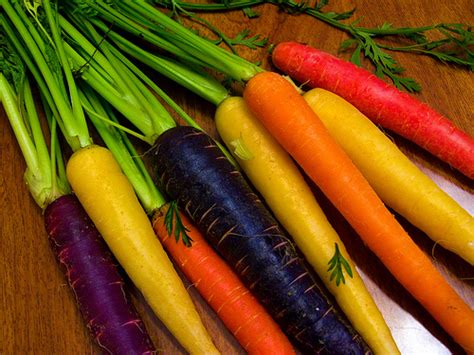 carrot colors carrot colors flickr photo