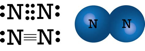 dot diagram for nitrogen draw the electron dot structure of nitrogen molecule