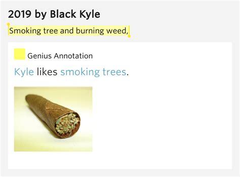 burning down the nicotine armoire lyrics gavin burning the nicotine armoire 28 images cherry