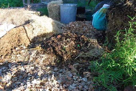 how to make a compost pile in your backyard build a compost pile how to compost compost how to make