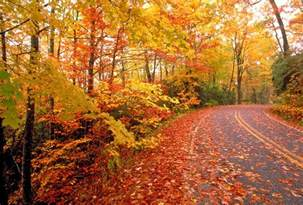 what are fall colors best drives in kentucky for fall colors