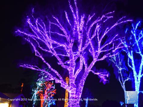How Much Are Zoo Lights Tickets La Zoo Lights 2015 Www La Zoo Lights Discount Offer Socal Field Trips