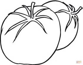tomato color the gallery for gt tomato coloring page