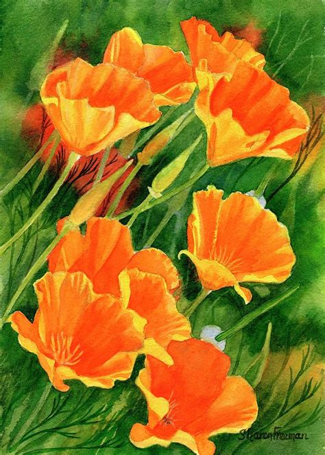california poppies faces up painting by freeman