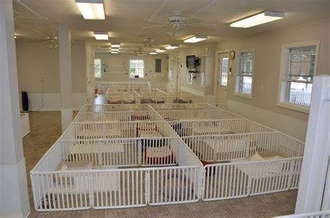 dog house boarding kennels indoor dog kennels houses plans designs