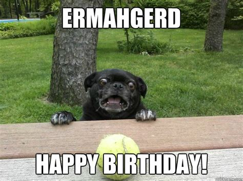 ermahgerd happy birthday berks dog quickmeme