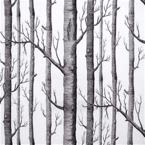 black and white tree wallpaper once upon a time sasha fitzgerald birch tree wallpaper