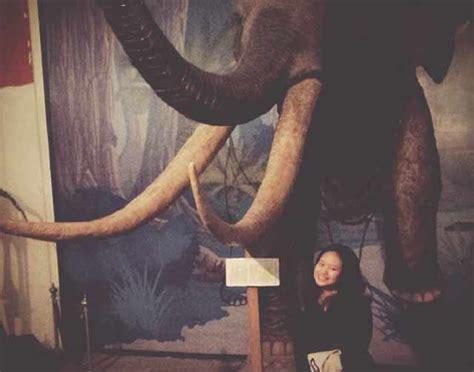 hal hal  sebenarnya bisa dilakukan  museum
