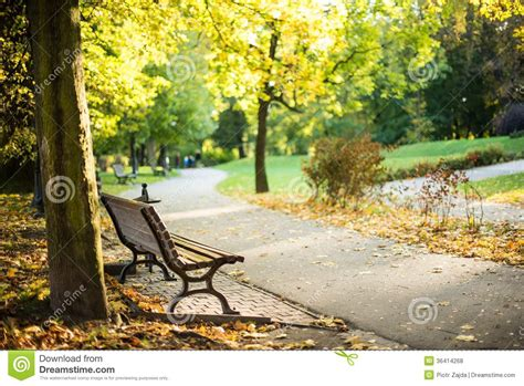 eckhart tolle park bench one peaceful place royalty free stock photos image 36414268