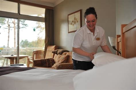 Find Housekeeping by Caign To Find 400 Housekeeping Assistants For Woburn Forest Starts Center Parcs
