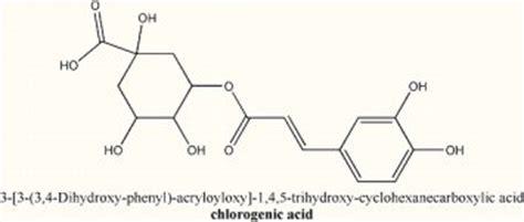 acido clorogenico alimenti caff 232 verde la nuova frontiera antiossidante e dimagrante