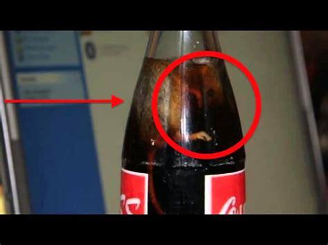 imagenes animadas asquerosas las 7 cosas m 225 s asquerosas encontradas en bebidas de coca
