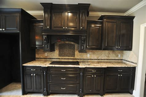 Kitchen Cabinets With No Doors Amazing Kitchen Cabinets With No Doors Greenvirals Style