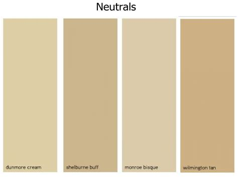 neutral colors neutral color