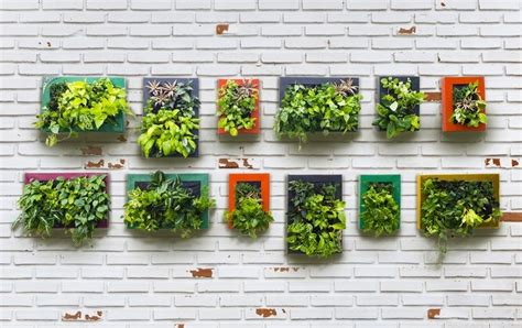 how to make vertical garden wall how to make a vertical garden ideas2live4