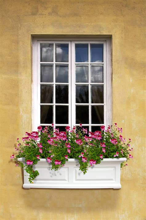 white window flower boxes mayne post nantucket 3ft wide window flower box white
