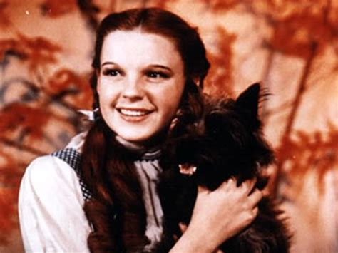 Oz Dorthy The Wizard In Oz the wizard of oz dorothy and toto wallpaper countries in