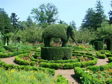 green animals topiary garden pin by teresa watkins on topiarius topiaria