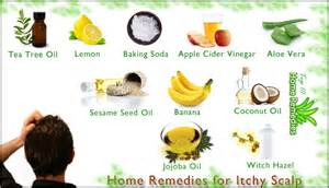 home remedy for itchy scalp home remedies for itchy scalp top 10 home remedies