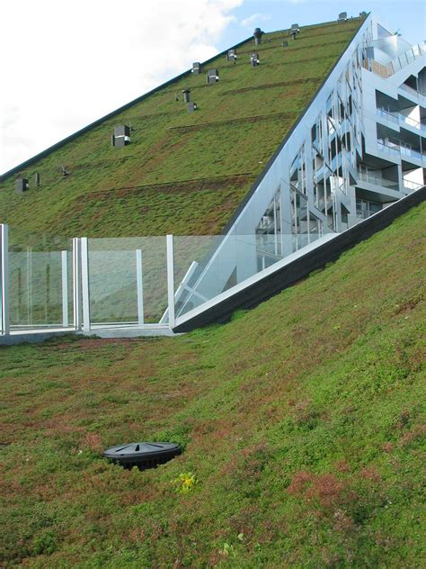 green roof big s 8 house wins the 2010 scandinavian green roof award