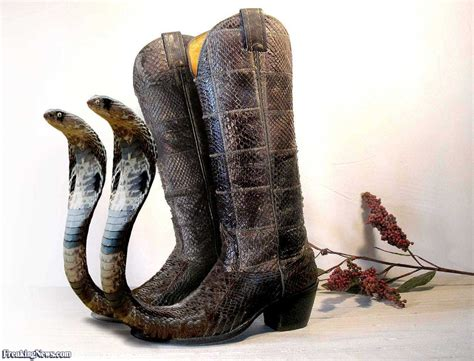 snake skin boots for snake skin western boots pictures freaking news