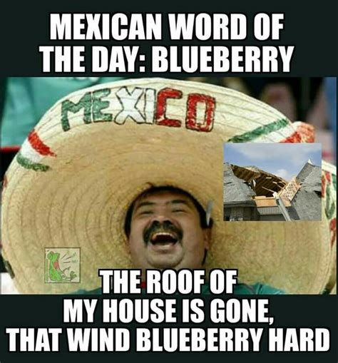 mexican wotd blueberry mexican word   day