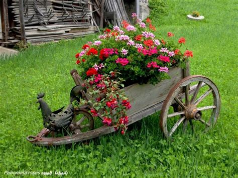 Wheelbarrow Garden Ideas 64 Best Images About Wheelbarrows On Pinterest Gardens Flower And Hydrangeas