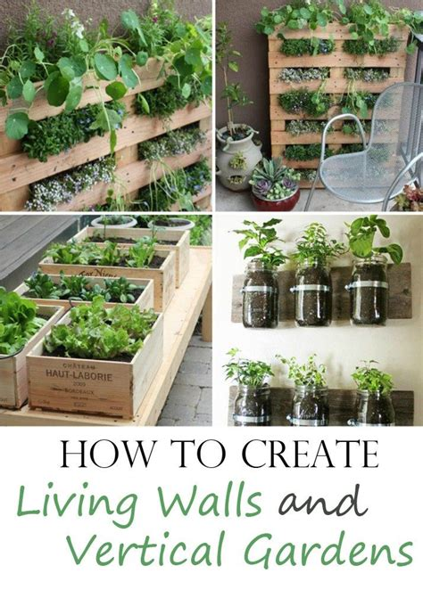 how to create living walls and vertical gardens living