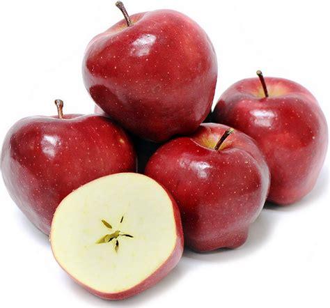 Buah Apel 15 gambar buah apel merah