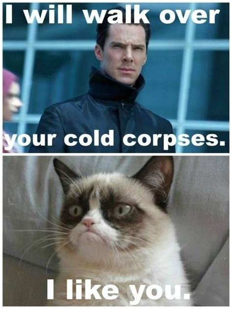 benedict cumberbatch try not to laugh 2703 best images about grumpy cat the grumpy group on