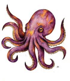 Octopus tattoos designs ideas and meaning tattoos for you