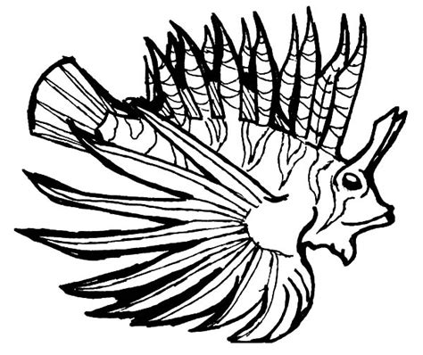 Pterois Volitans Isolated Lionfish Coloring Pages Batch Lionfish Coloring Page