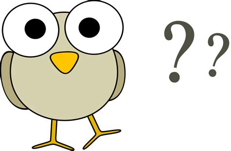 questions free clipart grey bird with question marks