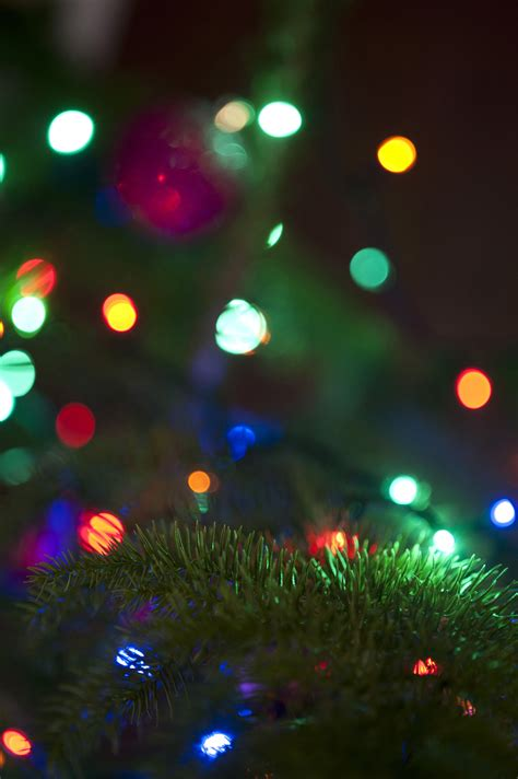 image of bokeh of colorful lights freebie