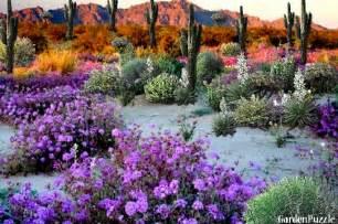 House Plan Designs Gardenpuzzle Project Desert Flower Garden