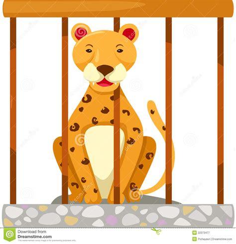 tigre in gabbia tigre in gabbia illustrazione vettoriale immagine di