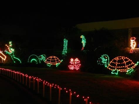 festival of lights galveston reviews festival of lights moody gardens galveston picture
