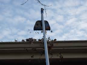 Free Home Design Software Roof best way to clean gutters neiltortorella com