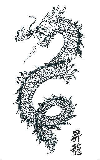dragon tattoo stencilseveryting   roof