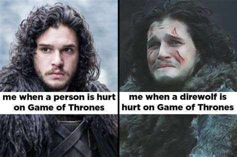 literally   funny game  thrones memes