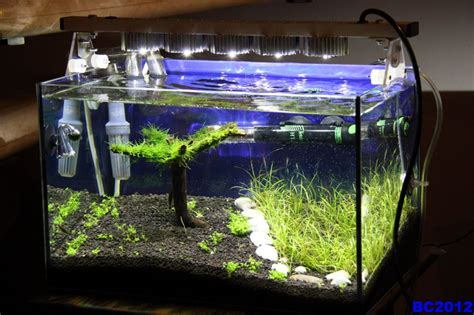 Lu Led Aquarium Diy and creative diy aquarium just craft diy projects