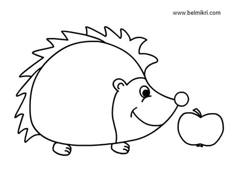 cute hedgehog coloring pages coloring pages