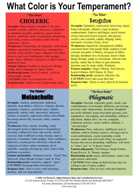Choleric Personality Essay by Best 25 Sanguine Personality Ideas On Temperament Types Character Personality