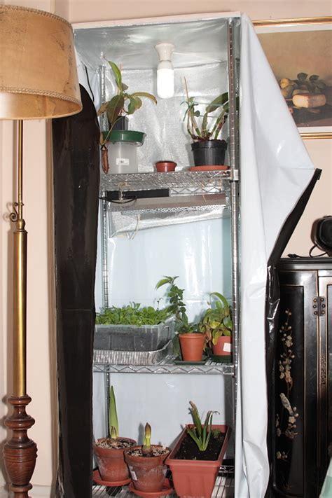 serra da interno esperimento serra da interno forum di giardinaggio it