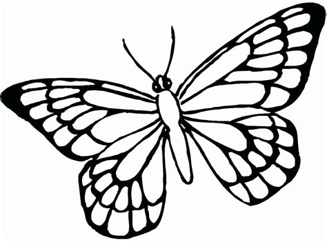 coloring page butterfly net 28 unique images of free printable coloring pages