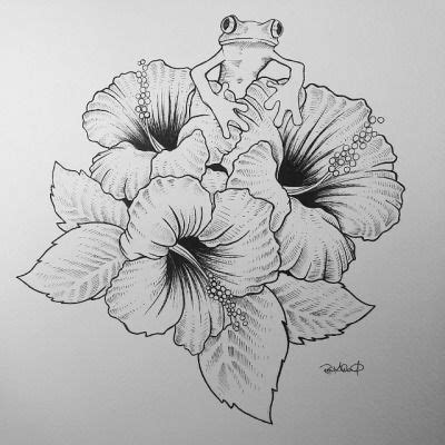 hibiscus hummingbird tattoo designs hibiscus flower drawing search ideas
