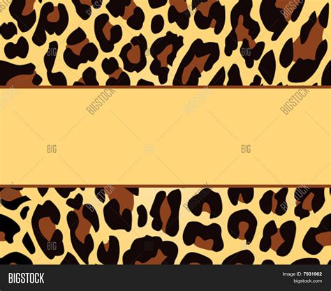 animal print templates leopard print card background template stock photo stock