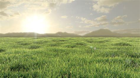 Sketches Grassy Land by Grassy Plains By Something31337 On Deviantart
