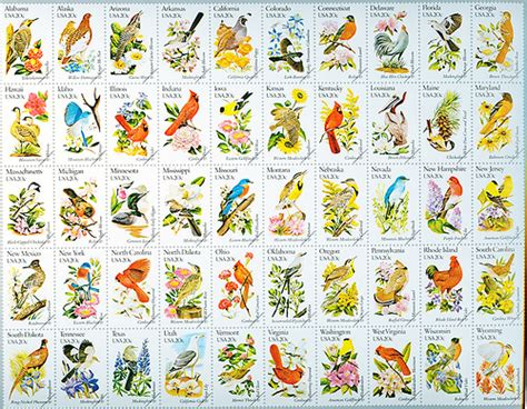 state flower list 50 state birds flowers flickr photo sharing